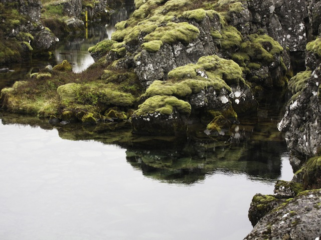 IMG_3179 Thingvellir Ntl Pk