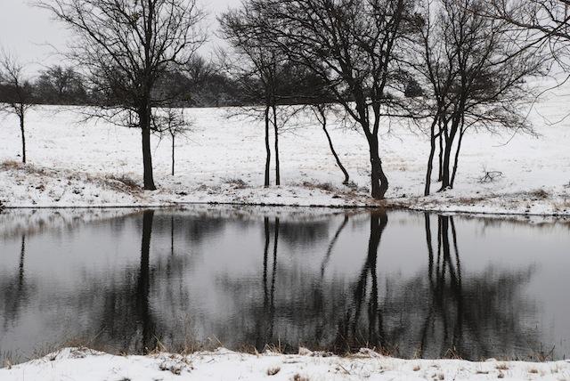 Woodcreek Ranch - winter